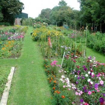 Cleggars Castle Garden