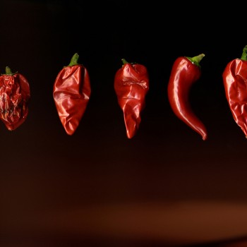 Dancing Chillies