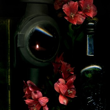 Red Flower and Lamp1
